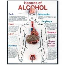 Alkoholio pavojai - mokomoji medžiaga
