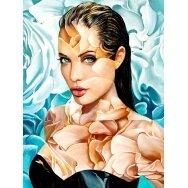 Deimantinės mozaikos rinkinys Angelina