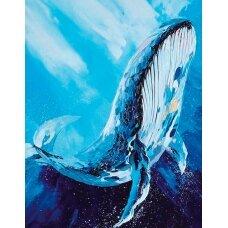 Deimantinės mozaikos rinkinys Didingasis banginis