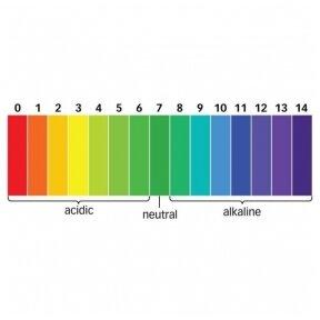 Kaip paaiškinti, kas yra pH?