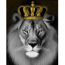 Tapybos pagal skaičius rinkinys Liūtas Karalius