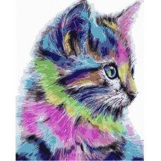 Tapybos pagal skaičius rinkinys Marga katytė