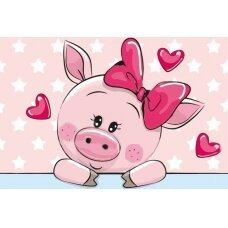 Tapybos pagal skaičius rinkinys Romantiška kiaulytė