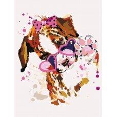 Tapybos pagal skaičius rinkinys Šunelis su rožiniais akiniais