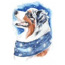 Tapybos pagal skaičius rinkinys Žiemos šuniukas