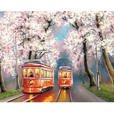 Tapybos pagal skaičius rinkinys Pavasario tramvajai